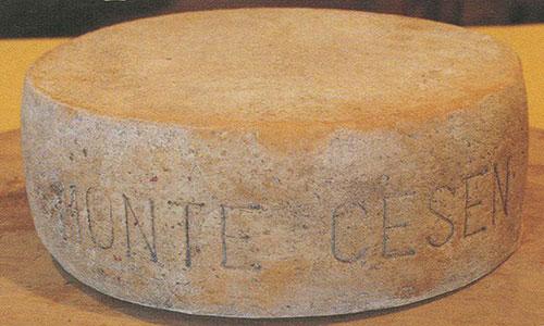 formaggio, monte cesen