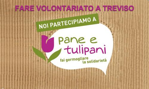 Volontariato a Treviso