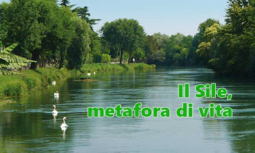 sile, fiume, treviso,