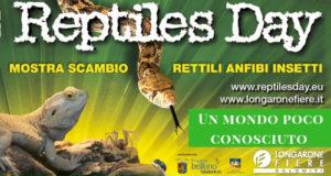 rettili, fiera, longarone, reptiles, day