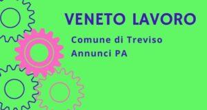 Offerta di Lavoro Comune di Treviso