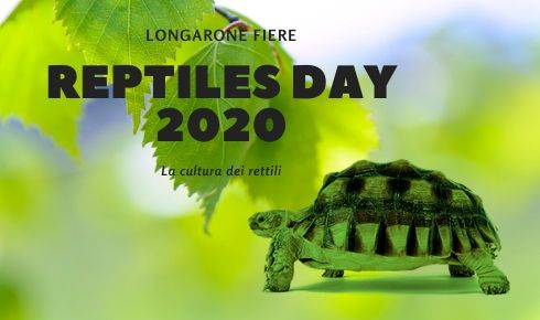 Reptiles Day 2020