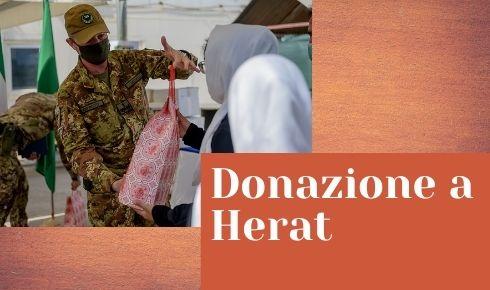 Multinational Land Force Donazione